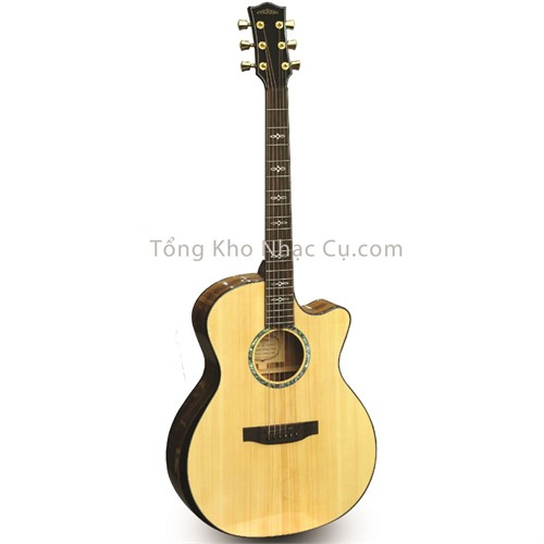 Đàn Guitar Acoustic Everest E100-LMT